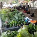 Agricultores familiares confirmam com servidores interesse por produtos