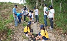 O plantio contou com a participação de 35 alunos da Escola Conceição Lyra