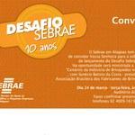 Sebrae lança Desafio 2009