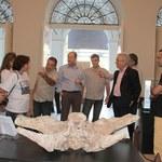 Gestores visitam exposição do Museu de História Natural da Ufal