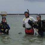 Pesquisa descobre quatro novas esponjas marinhas em Alagoas