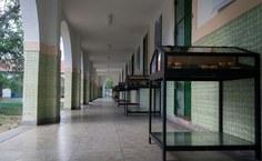 Museu de História Natural da Ufal. Foto: Willams Fagner