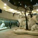 De Moscou para Alagoas: diretora do Museu de Darwin desembarca na Ufal