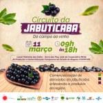 Jabuticaba é destaque em evento que será realizado em Palmeira dos Índios