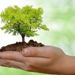 Núcleo de Educação Ambiental divulga nota no Dia do Meio Ambiente