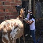 Projeto auxilia comunidades rurais no enfrentamento ao coronavírus