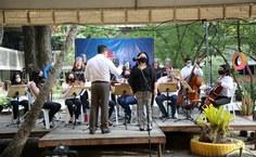 Orquestra e Corufal